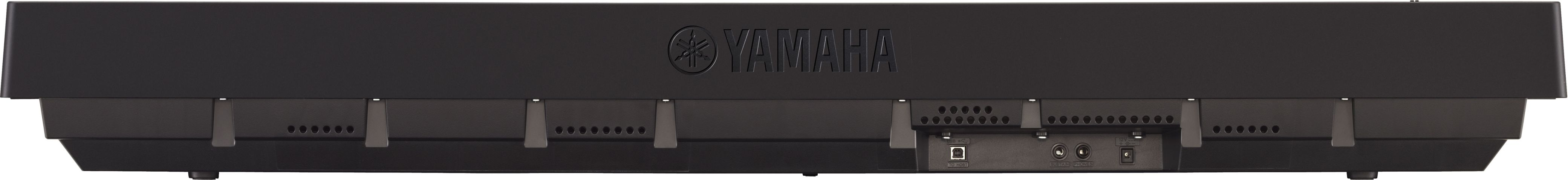 Yamaha P Demo Songs